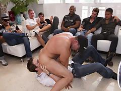 Gay rights groups and gay newsgroups for escorts sf at Sausage Party