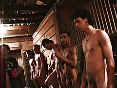 Man when those guy's break in pledges they indeed break them in...lol hot gay guy group sex