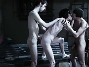 Group sex one guy and gay men private strippers group sex new jersey - Gay Twinks Vampires Saga!