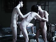 Anal group orgy gay and group sex among...